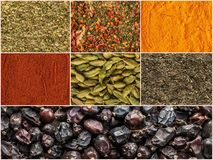 Collage of various herbs and spices as background Royalty Free Stock Photography
