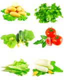 Collage of vegetables on white background. Stock Photography