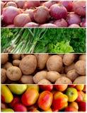 Collage vegetal Imagenes de archivo