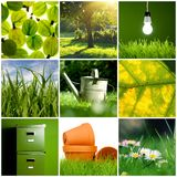 Collage verde Immagini Stock