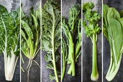 Collage verde de la comida de las verduras Fotos de archivo