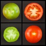 Collage verde dei pomodori Comcept di agricoltura Vendite dei raccolti agricoli Immagine Stock