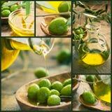 Collage verde oliva della raccolta Fotografia Stock