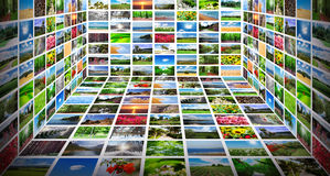 Collage vieler Fotos Stockfotografie