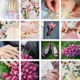Collage von den Hochzeitsfotos Stockbild