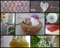 Collage von rustikalen Land-Beschaffenheiten Lizenzfreie Stockfotos