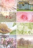 Collage von Saisonbildern mit Weinleseblick stockbilder