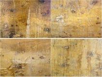 Collage von vier Beschaffenheiten des alten Mahagonibaumes Stockfotos
