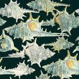 Collage, waterverf, het mooie kunstwerk met zeeschelpen in grungestijl vector illustratie