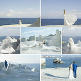 Collage of wedding couple. Wedding collage. Fashion art photo of bride and groom on the seashore Royalty Free Stock Photography