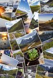 Collage wild nature of Altai. Mountains, valleys, rivers, lakes, snowy peaks, green meadows. Journey through the Altay collage Stock Images