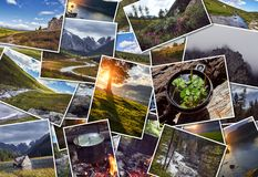 Collage wild nature of Altai. Mountains, valleys, rivers, lakes, snowy peaks, green meadows. Journey through the Altay collage Stock Photo