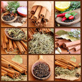 Collage With Spices Royalty Free Stock Photos