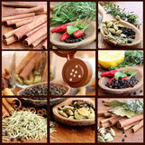 Collage With Spices Royalty Free Stock Photo