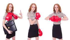 The collage of woman businesswoman with boxing gloves on white Stock Image