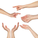Collage of woman hands Royalty Free Stock Photography