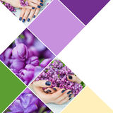 Collage woman hands with dark blue manicure. And lilac flowers closeup stock images