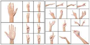 Collage of woman hands, various gestures. Royalty Free Stock Photography