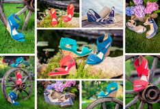 Collage of women's shoes, shoe ads, shopping. A royalty free stock photography