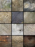 Collage of wooden cut trunks textures Royalty Free Stock Images