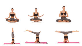 Collage of young beautiful girl posing yoga on white Royalty Free Stock Images