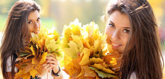Collage, young beautiful woman with a bouquet of maple leaves stock image