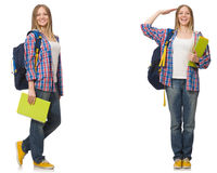 The collage of young female student on white. Collage of young female student on white Stock Images