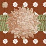 Collageachtergronden van diverse bruine installatie natuurlijke patte Royalty-vrije Stock Afbeelding