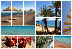 collagedahab Royaltyfri Bild