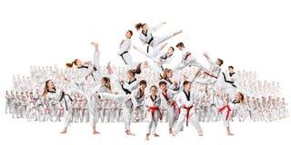 Collaget om gruppen av ungar som utbildar karatekampsporter royaltyfri foto