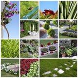 collageträdgård Royaltyfri Bild