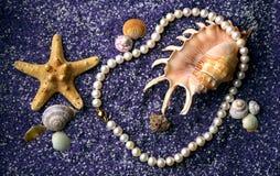 Collana della perla con il seashell e le stelle marine Fotografia Stock