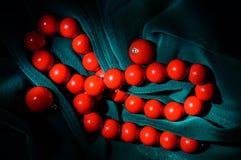 Collana di corallo rossa ed orecchini Fotografie Stock