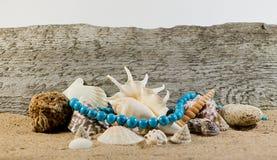 Collana e conchiglie del turchese Fotografia Stock