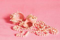 Collana e conchiglie della perla Fotografia Stock