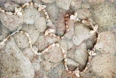 Collane delle conchiglie su un fondo grigio Fotografie Stock