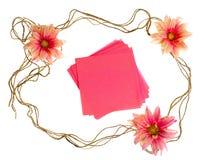 Collants avec des fleurs Photos libres de droits