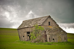 Collapsing Wooden Barn Royalty Free Stock Images