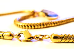 Collar. Gold collar Royalty Free Stock Image
