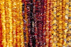 Collar ambarino Ámbar de diversos colores y tamaños Fotografía de archivo