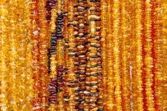 Collar ambarino Ámbar de diversos colores y tamaños Imágenes de archivo libres de regalías