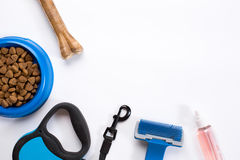 Collar, blue bowl with feed, leash, delicacy, combs and brushes for dogs.  on white background Stock Photo
