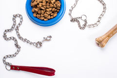 Collar, blue bowl with feed, leash and delicacy for dogs.  on white background Stock Photography