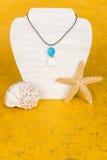 Collar #11 de la concha marina Foto de archivo libre de regalías
