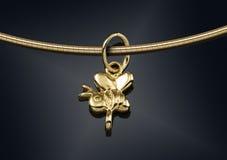Collar de oro con en negro Imagenes de archivo
