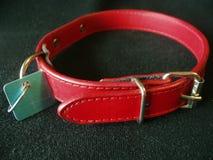 Collar de perro con la etiqueta de identificación Imagen de archivo libre de regalías