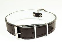 Collar de perro negro Fotos de archivo libres de regalías