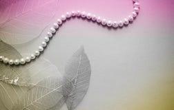Collar femenino del fondo femenino de perlas Imagen de archivo libre de regalías