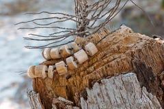 Collar hecho a mano de madera al aire libre Imagenes de archivo