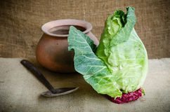 Collard Stock Images